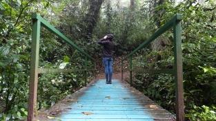 """En attendant les """"hanging bridges"""""""
